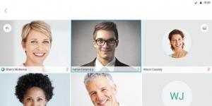 Cisco Webex Meetings indir